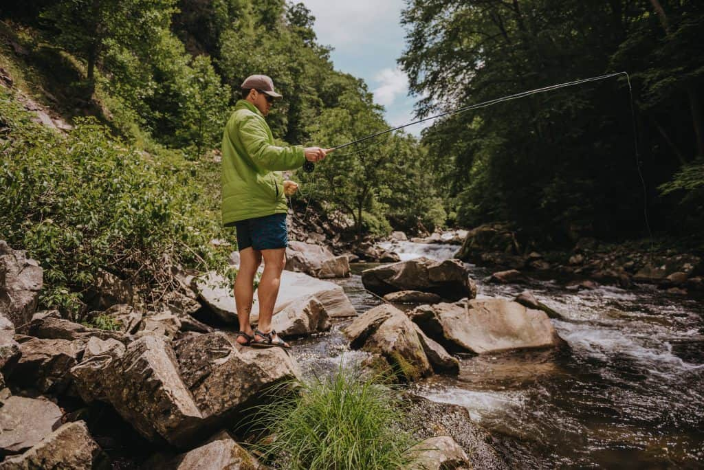 Georgia Delayed Harvest Fly Fishing