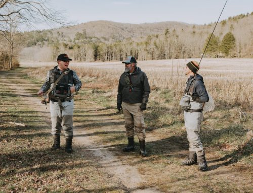 How to Transition from Winter to Spring Fly Fishing in the Southeast